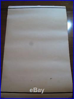 SILVER SURFER At Last I'm Free(1971) MARVEL THIRD EYE black light poster TE 4005